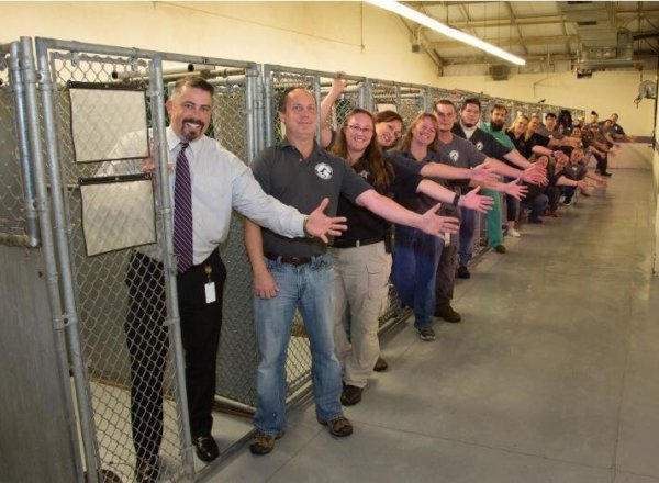 ANIMAL SHELTER, DIRECTOR JACKSON ACHIEVE 91.6% LIVE RELEASE IN FIRST MONTH!