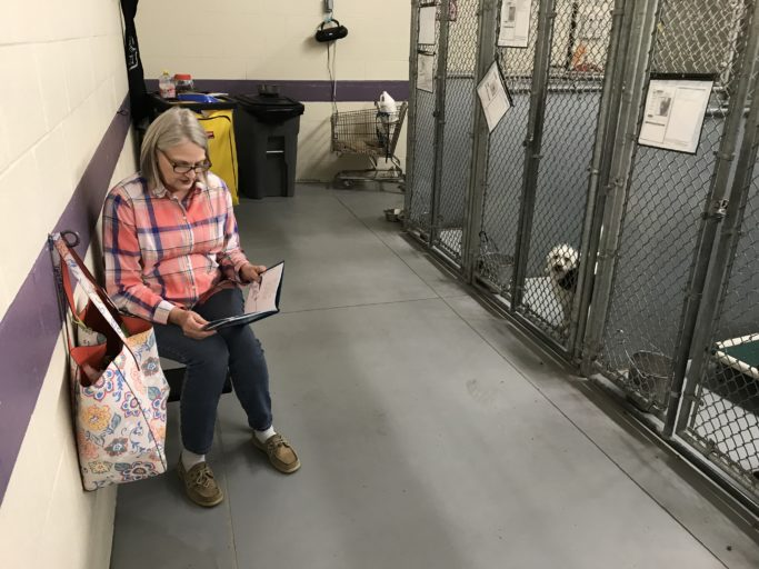 Is that lady seriously reading to dogs?! THANKS leads animal behavior revolution in Montgomery County Animal Shelter