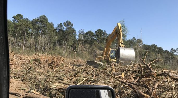 No wonder Metts is pro-tollroads: Metts has lucrative logging contract with TxDOT for TX-249 Tollway aka Decimation of Hope Highway