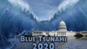 How to stop the blue tsunami with direct citizen action RIGHT NOW